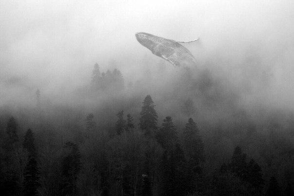 Сюрреализм в черно-белой фотографии