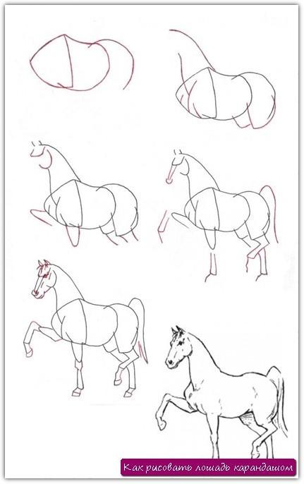 Как нарисовать карандашом поэтапно лошадь видео