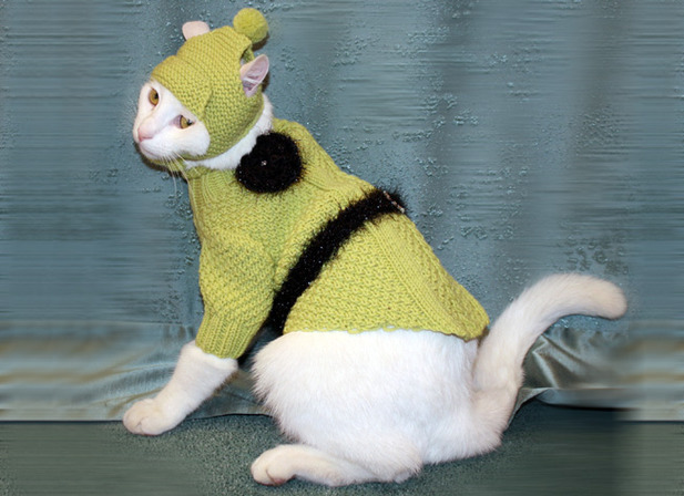 Вяжем спицами одежду для кошек 197