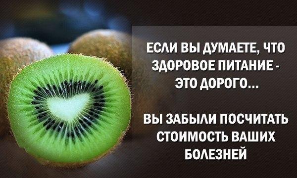 Здоровое питание цитаты афоризмы
