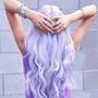 Lavender_cat5