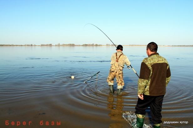 астрахань рыбалка база дедушкин