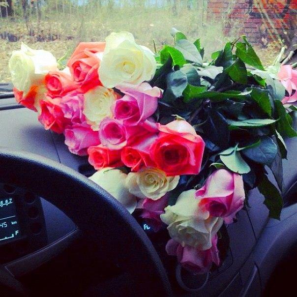 Реальные цветов в машине