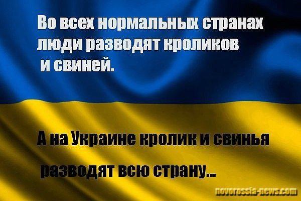 ukrainku-razveli-na