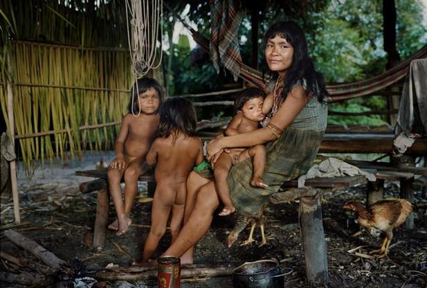 проно рассказ негры в джунглях