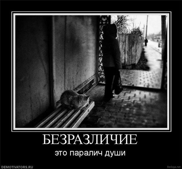 не предают: