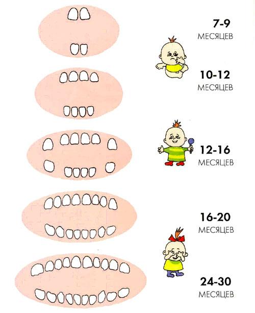 Почему у годовалого ребенка воняет изо рта