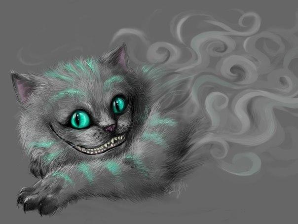 Фото кота серьёзно но