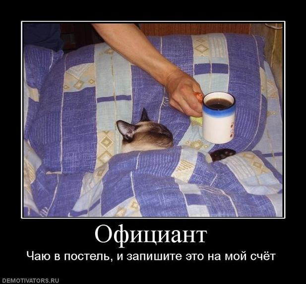 http://f.mypage.ru/ae306be2e2ad98732cc435b76697edda_cfe57103b6f43d5e425eab58b0bc9ed7.jpg