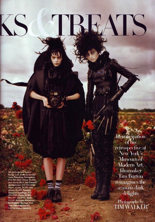 gothic genre explored in tim burtons Helena bonham carter and johnny depp in tim burton movies explore our collection of if using dark gothic concept-instead of looking at flowers to.