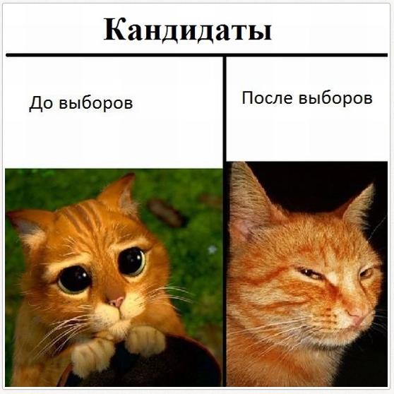http://f.mypage.ru/b8b11d8c269a306084fd3fb2602f62b2_ecac587bc6a0193cf227138802d62a38.jpg