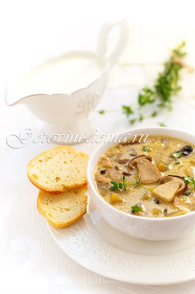 суп из белых грибов с сыром рецепт с фото